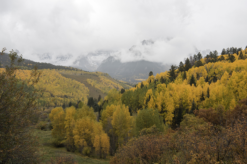 Cimarron Ridge, Ridgway, Colorado