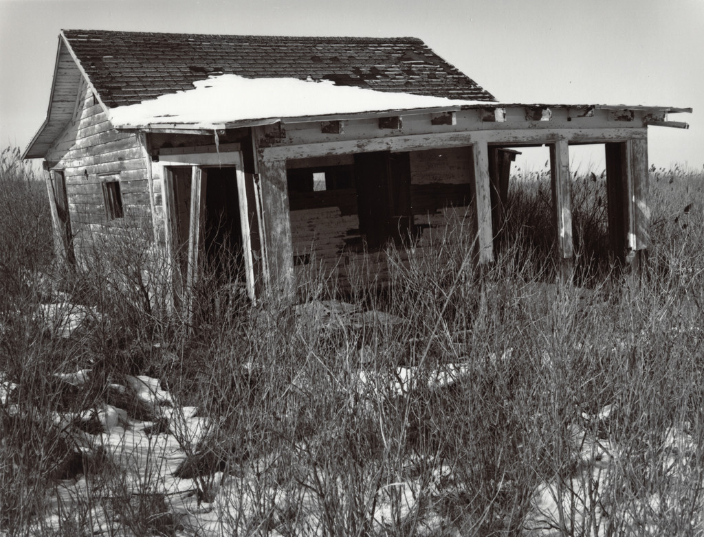 Abandoned Home, South Jersey