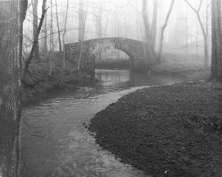 Foggy Morning at MacDaniel's Bridge, Upper Makefield